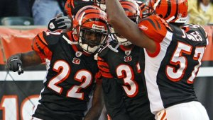 AP photo from www.bengals.com